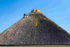 Rieten dak ontmossen en onderhouden