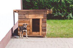 Stap 4 – Plaats de vloer en het dak