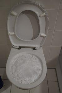 toilet ontstoppen