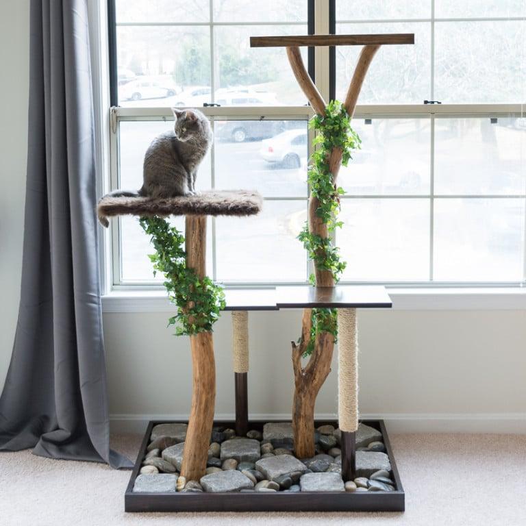 Natuurlijke kattenboom