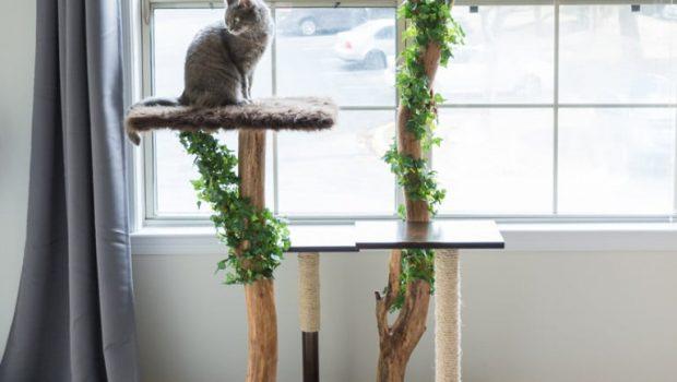 xNatuurlijke-kattenboom-bybrittanygoldwyn.com_-620x350.jpg.pagespeed.ic.MOJBopbItE.jpg