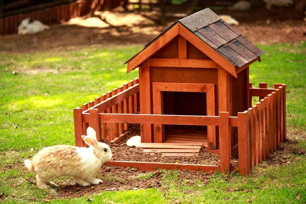 Wonderbaarlijk Zelf je konijnenhok maken: 5 voorbeelden van DIY konijnenhokken CR-35