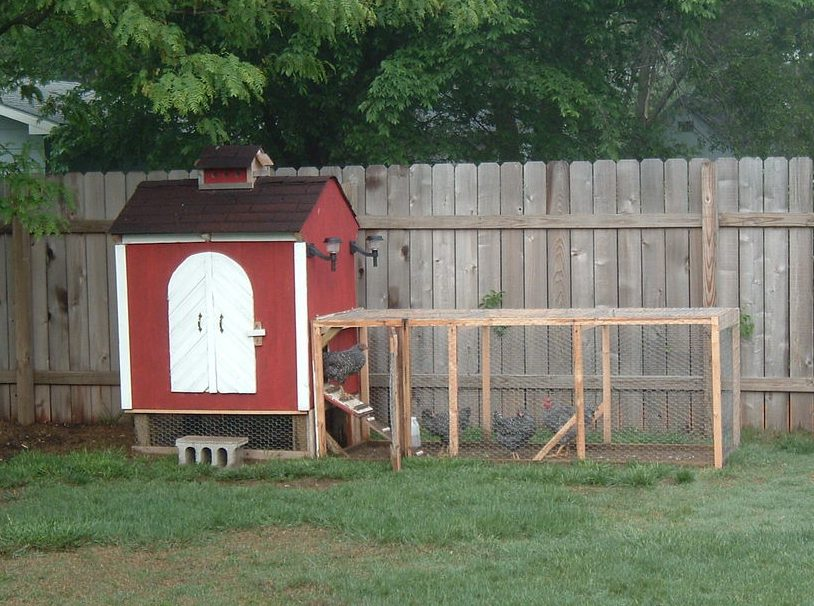 Kippenhok met bouwplan