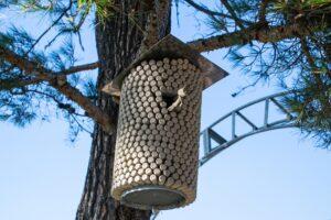 Vogelhuisje van een wijnfles