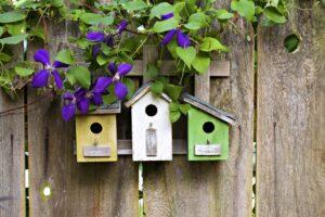 Zelf vogelhuisjes maken