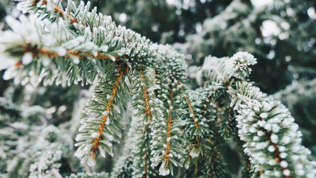 Klussen in de winter