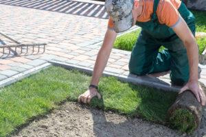 Gras zaaien, graszoden of kunstgras. Wat kies jij in je tuin?