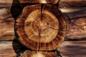 Vijf populaire houtsoorten