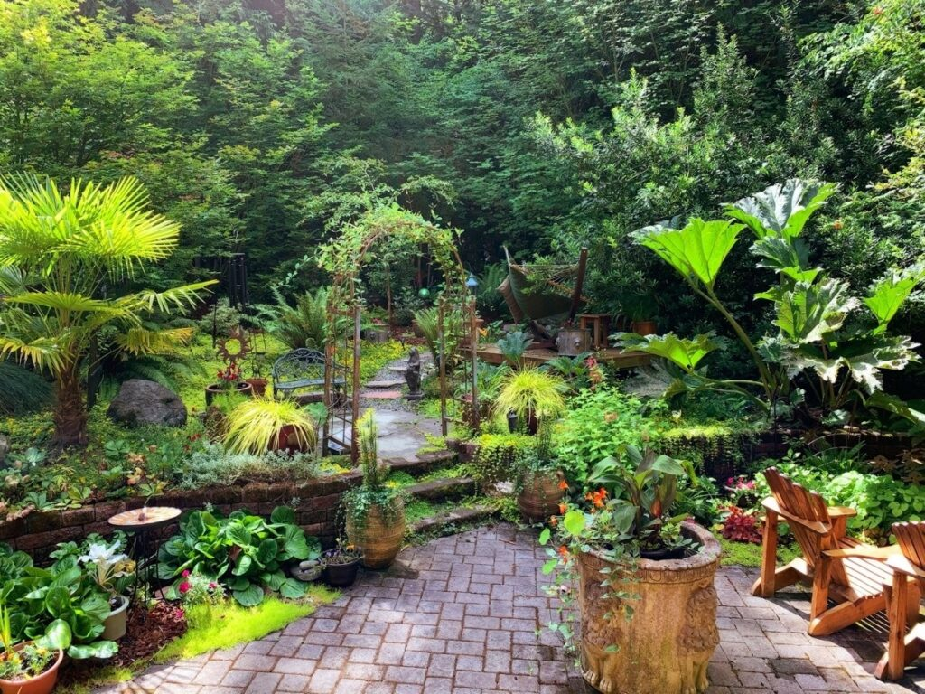 Planten en bloemen in je tuin