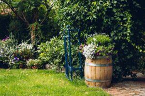 Alles-wat-je-moet-weten-over-een-klimaatadaptieve-tuin