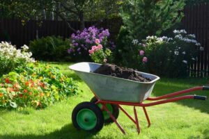 Kruiwagen in de tuin